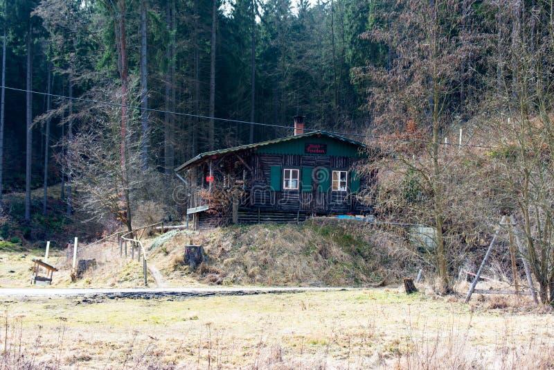 Trähus i mitt av skogen arkivbild