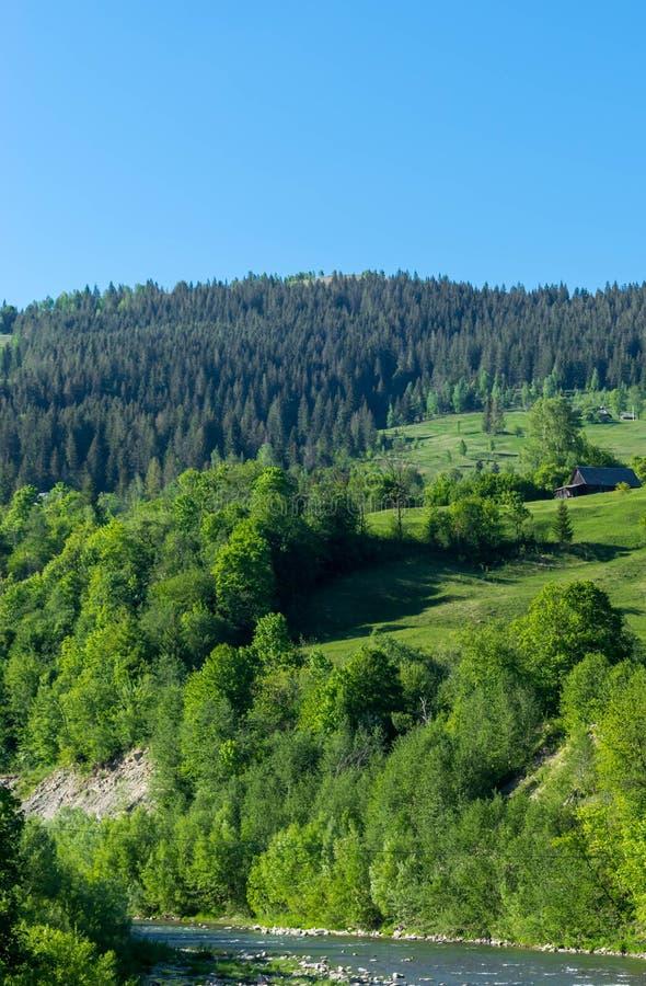 Trähus på kullen nära floden arkivbilder