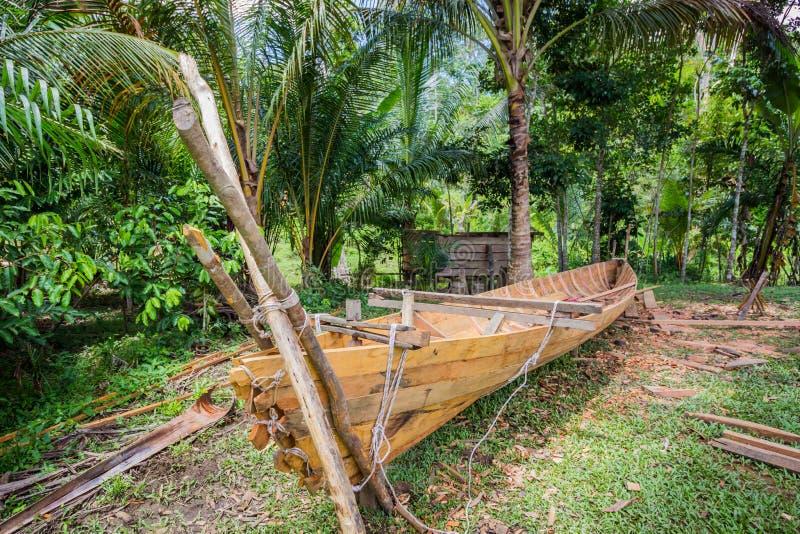 Träkanot i djungler fotografering för bildbyråer