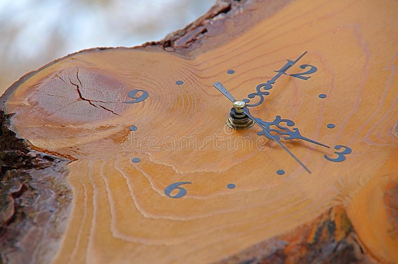 Träklockan arkivfoto