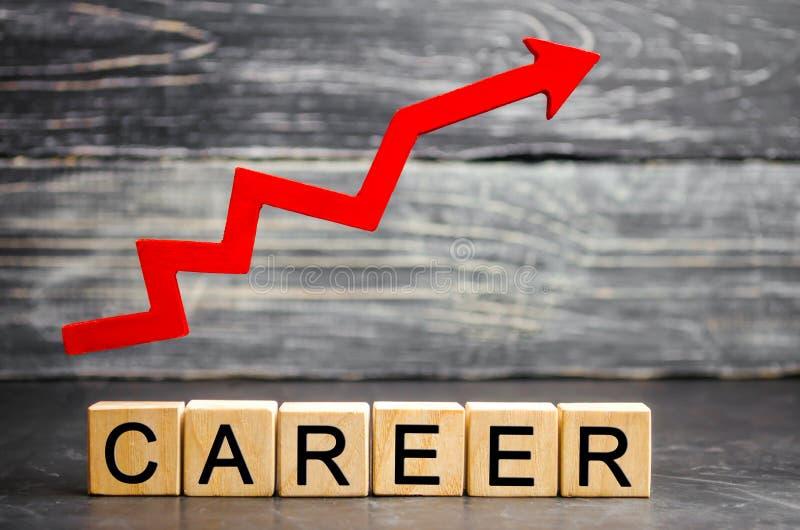 Träkvarter med orden 'karriär 'och den övre pilen personlig och karriärtillväxt, själv-utveckling, framgång, framsteg och potent arkivfoton