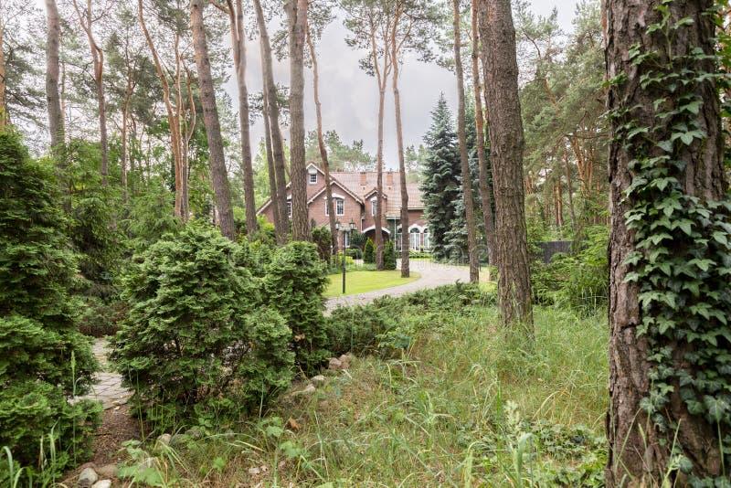 Trän med buskar och träd med ett engelskt stilhus i bakgrunden royaltyfri fotografi