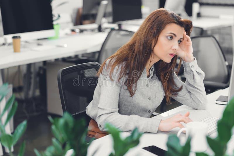 Tränad ung företagare som använder stationär dator arkivfoton