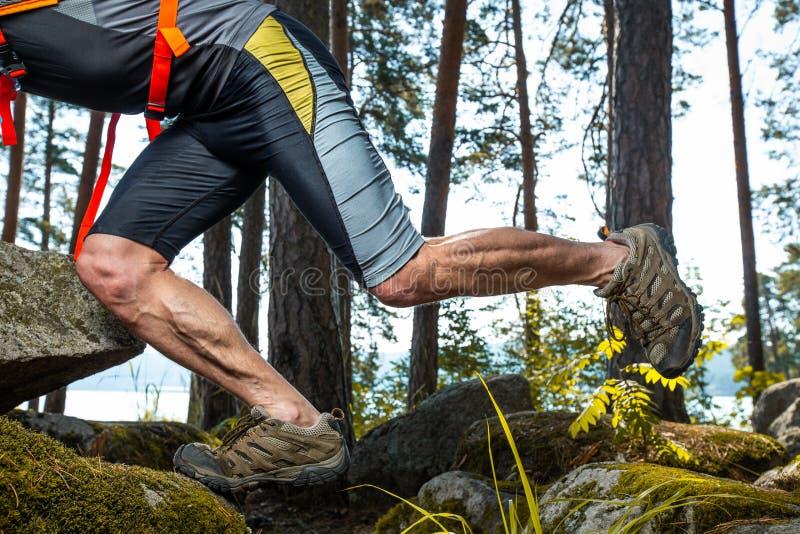 Tränga sig in ben av den körande idrottsman nen för slinga royaltyfria foton