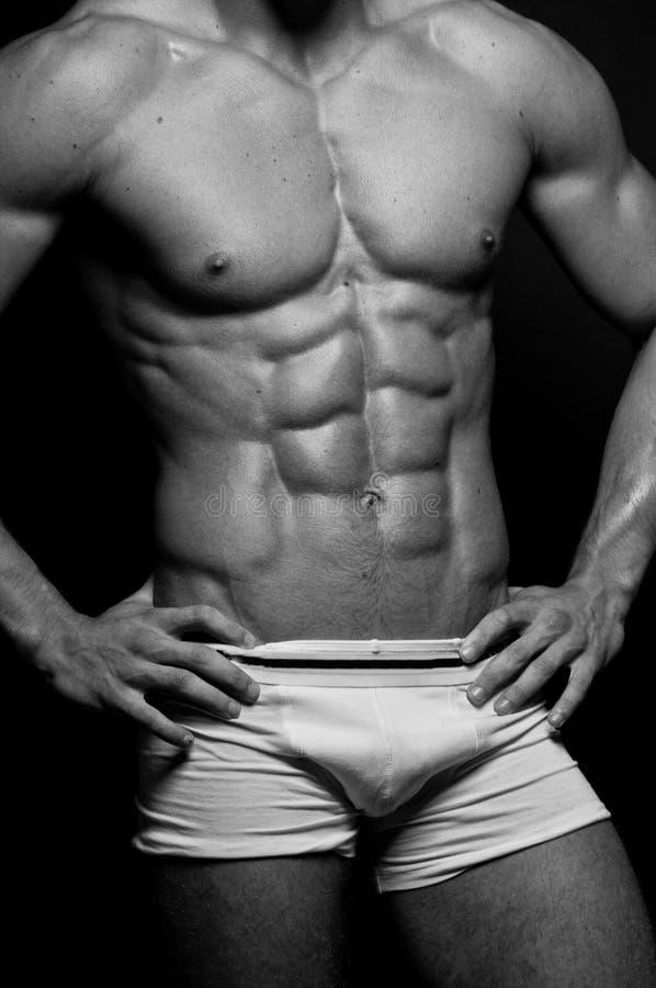 Tränga sig in male torso royaltyfri bild
