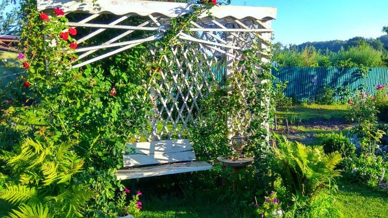 Träpergola i trädgården royaltyfri foto
