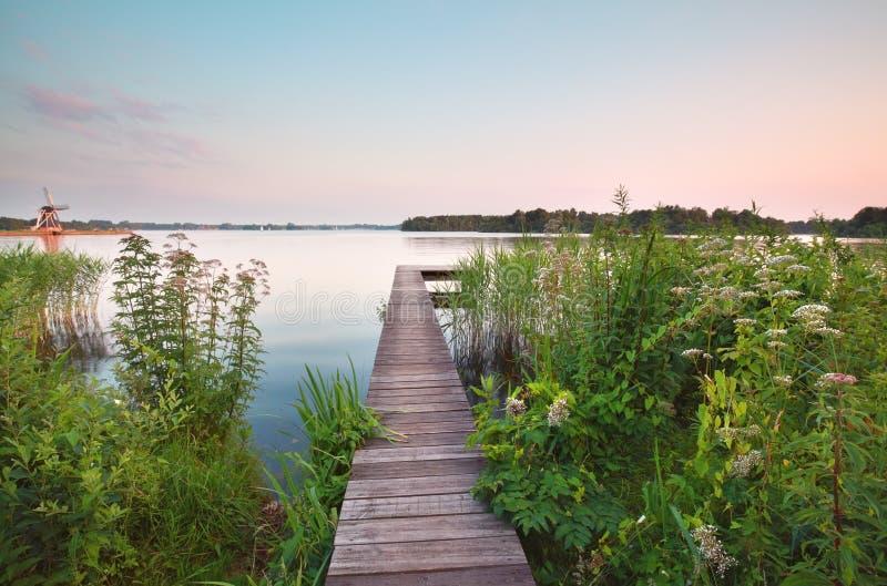 Träpir på den stora sjön i sommar royaltyfri foto
