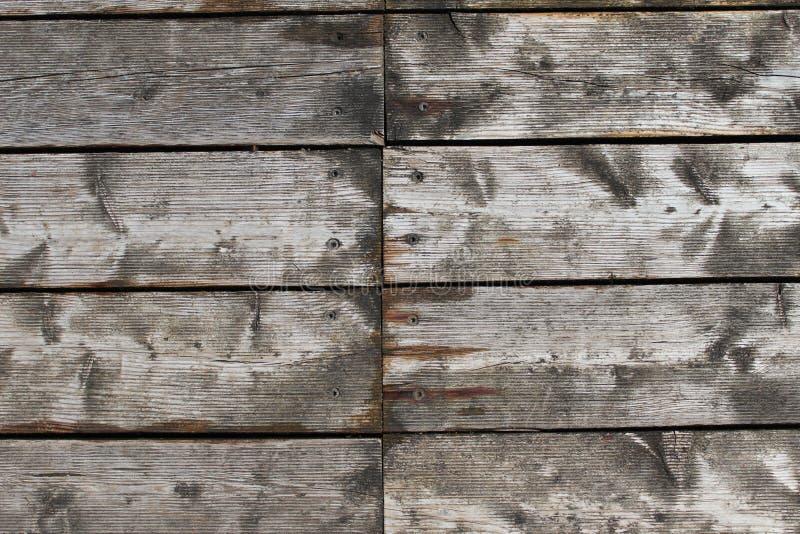 Träplankamodell arkivbild