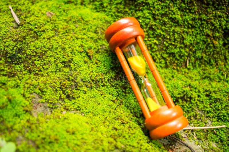 Träsandklockan med solsken reflekterar förlagt på vaggar som har arkivbild