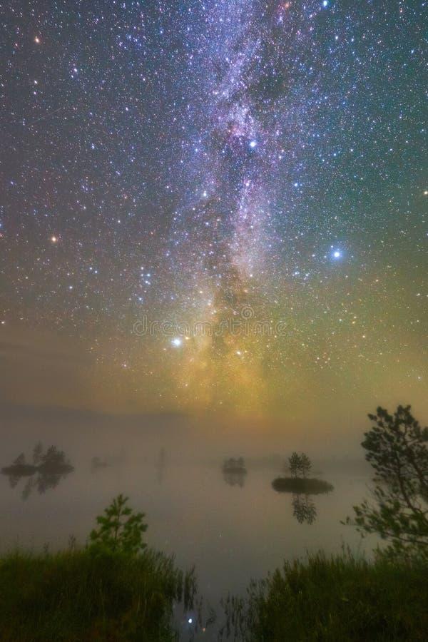 Träsk i natten fotografering för bildbyråer