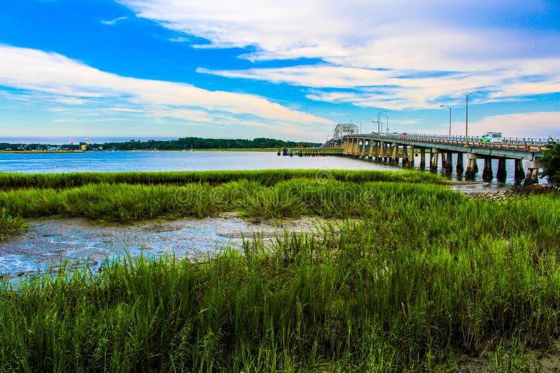 Träsk med en flod och en bro royaltyfri foto