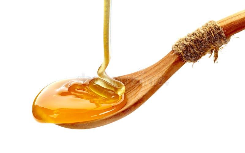 Träsked av honung arkivfoton