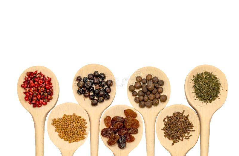 Träskedar som isoleras på vit med kulöra kryddor, bär och frö arkivfoto