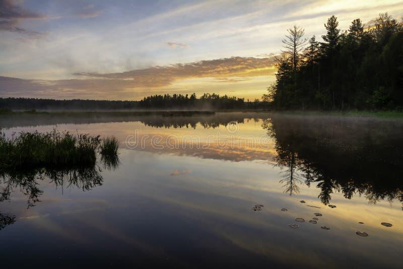 Tr?sket p? fiskhusv?gen Adirondack parkerar royaltyfri foto