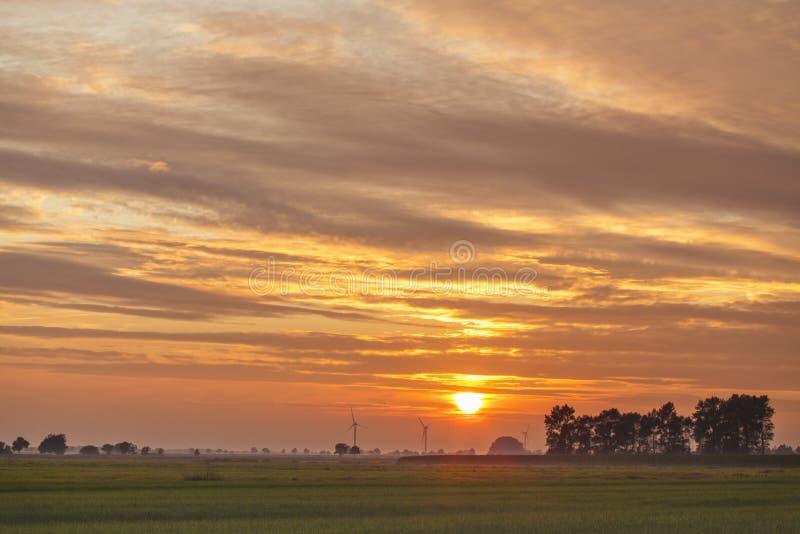 Träsklandskap med vindturbiner på solnedgången arkivfoto