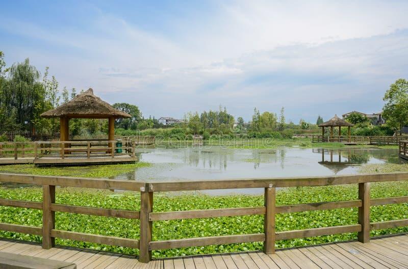 Träspång och paviljonger över sjön i bygd på den soliga sommarmiddagen royaltyfria foton