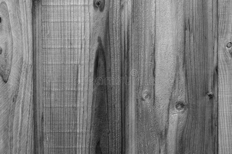 Trästaket Grain Background i svartvitt fotografering för bildbyråer