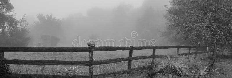 Trästaket på ängen i dimman Baner för design arkivbilder