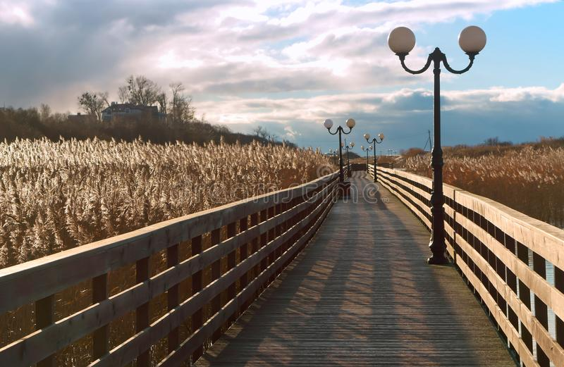 Trästrandpromenad till och med vasserna i solljuset, en träplankapromenad med lyktstolpar royaltyfri bild