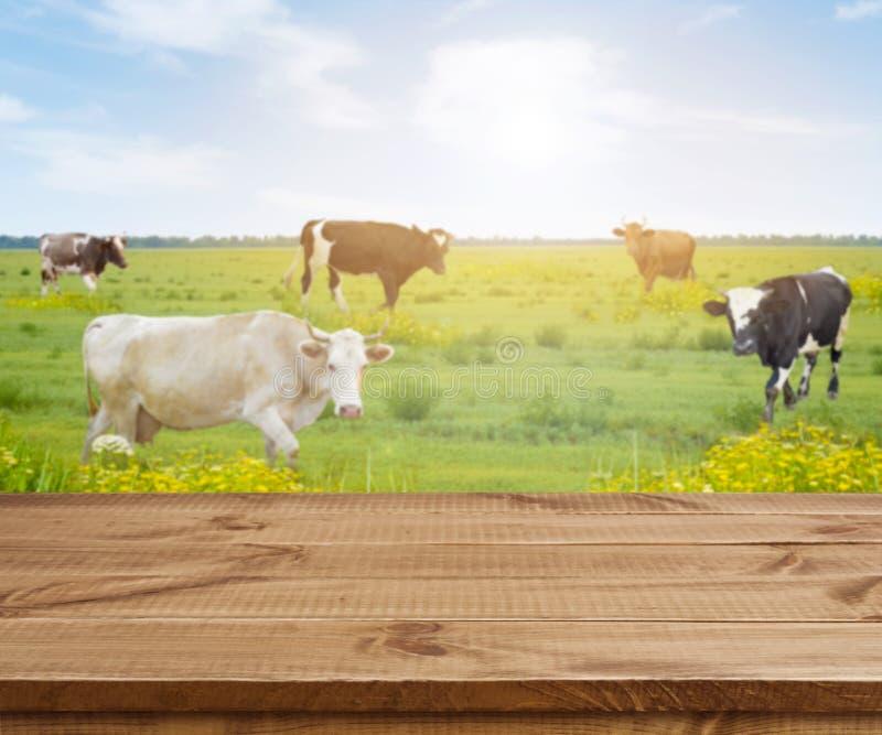 Trätabell över defocused bakgrund med kor och gräsängen fotografering för bildbyråer