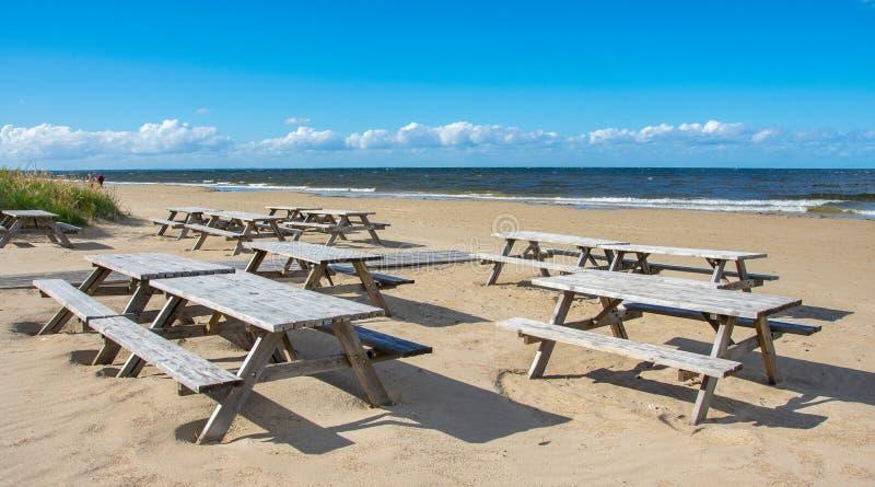 Trätabeller och bänkar av ett sommarkafé på en öde strand i den ljusa soliga dagen av början av hösten royaltyfria bilder