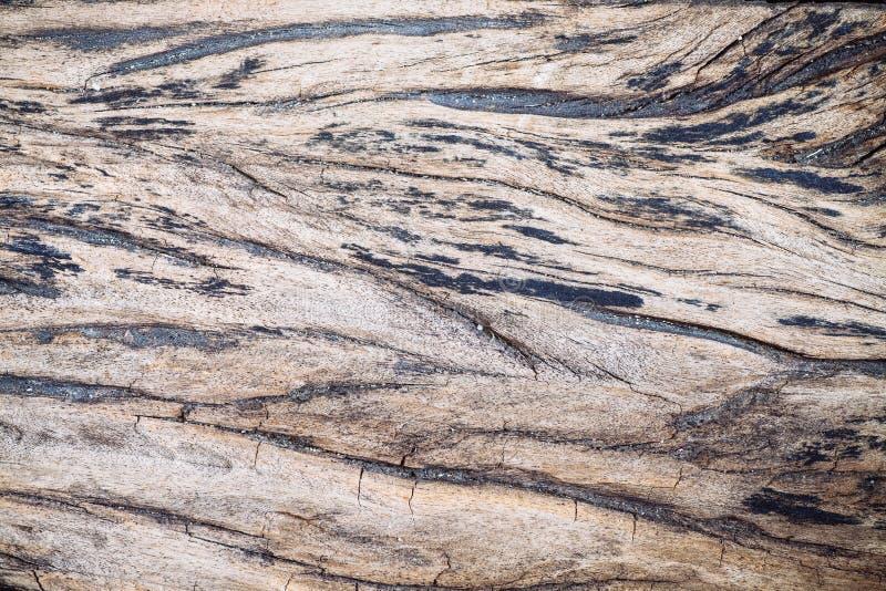 Trätextur - wood korn, tappningstil royaltyfria bilder