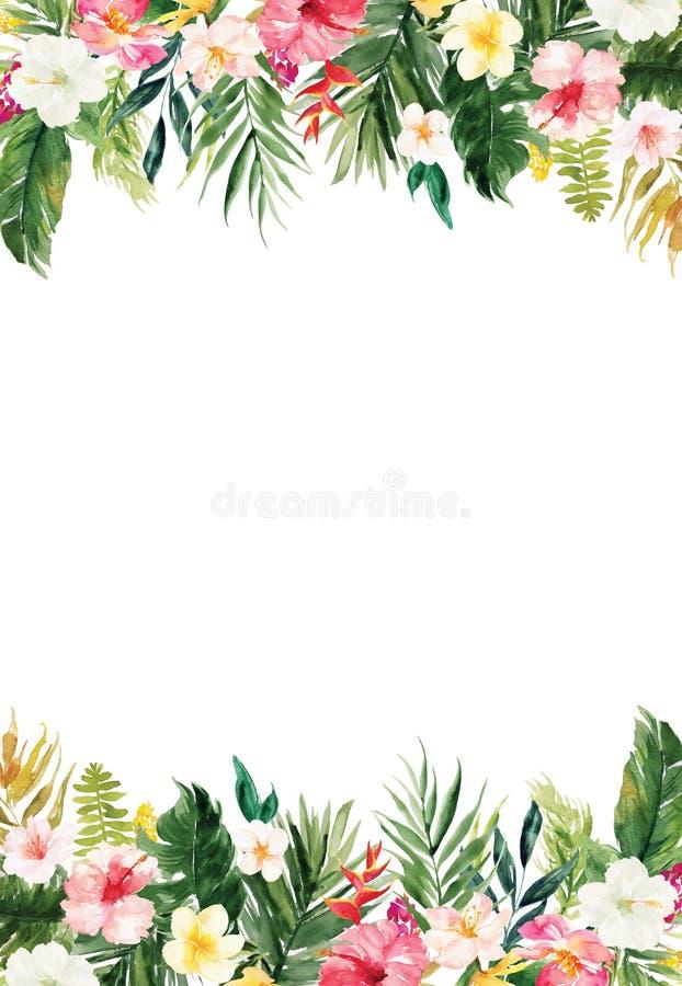 Trätexturerad bakgrund med växter och blommor gränsar vektor illustrationer