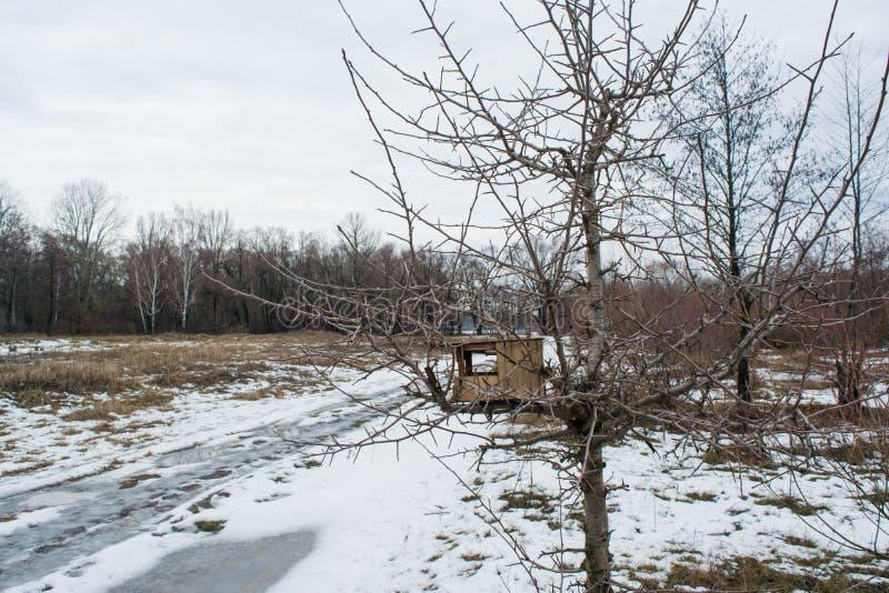 Trätom fågelförlagematare på träd under vintersäsong arkivbilder