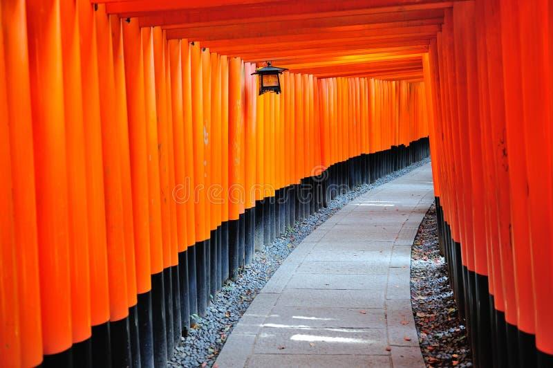 TräTorii på den Fushimi Inari Taisha relikskrin i Kyoto, Japan royaltyfri bild