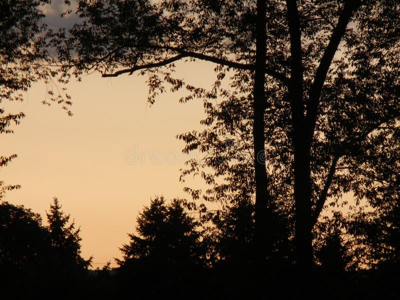 Träumen bei Sonnenuntergang stockfotografie