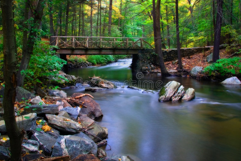 Träumerischer Fluss stockbilder