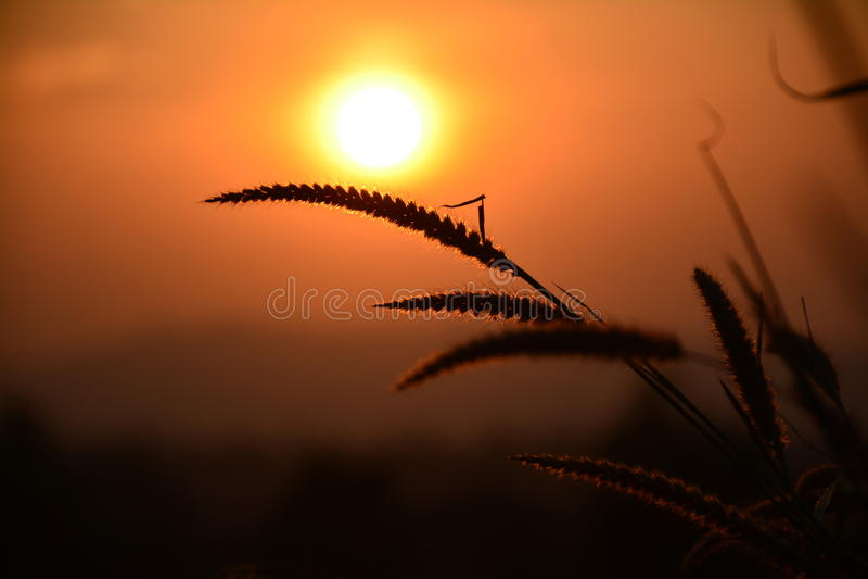 Träumerischer und poetischer Abend lizenzfreies stockfoto