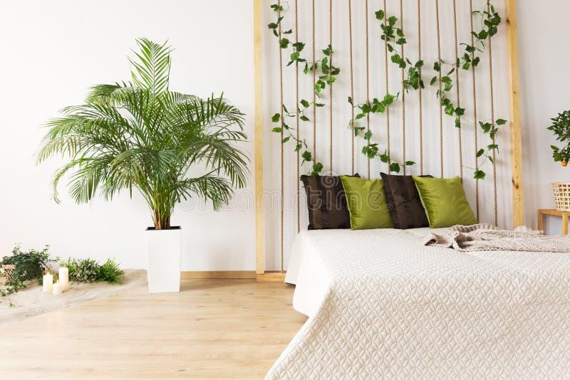 Träumerisches Schlafzimmer mit Zierpflanze lizenzfreie stockbilder