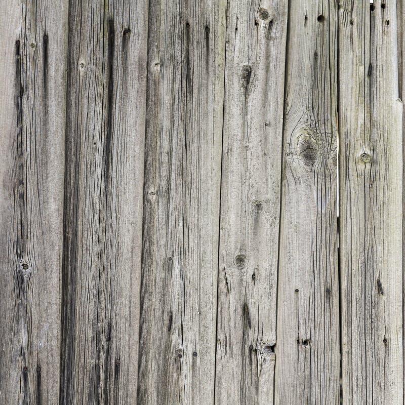 Träväggbakgrund fotografering för bildbyråer