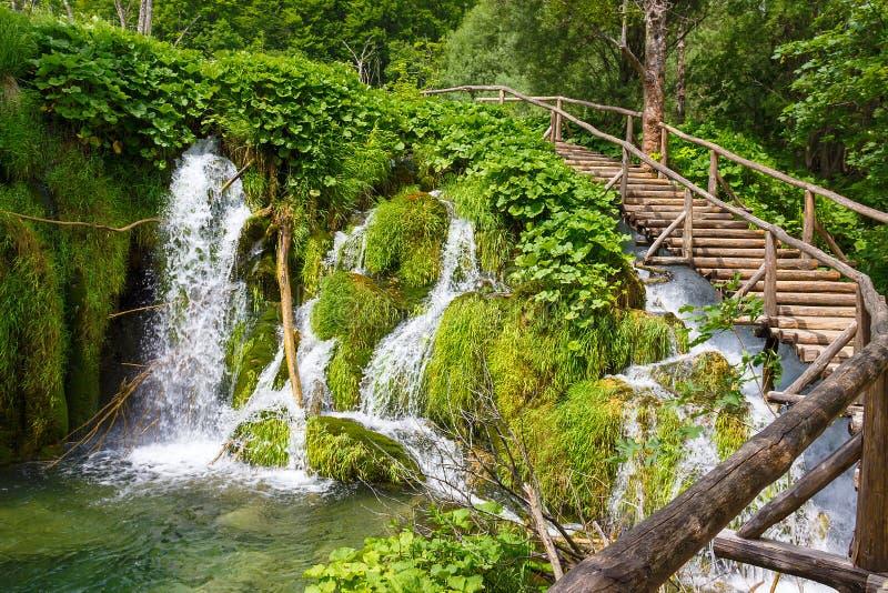 Trävandringsled i Plitvice sjöarna croatia royaltyfri fotografi