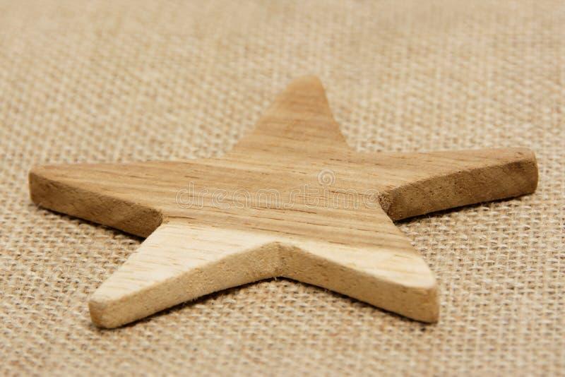 trävektor för stjärna för elementingreppsparkett royaltyfria foton