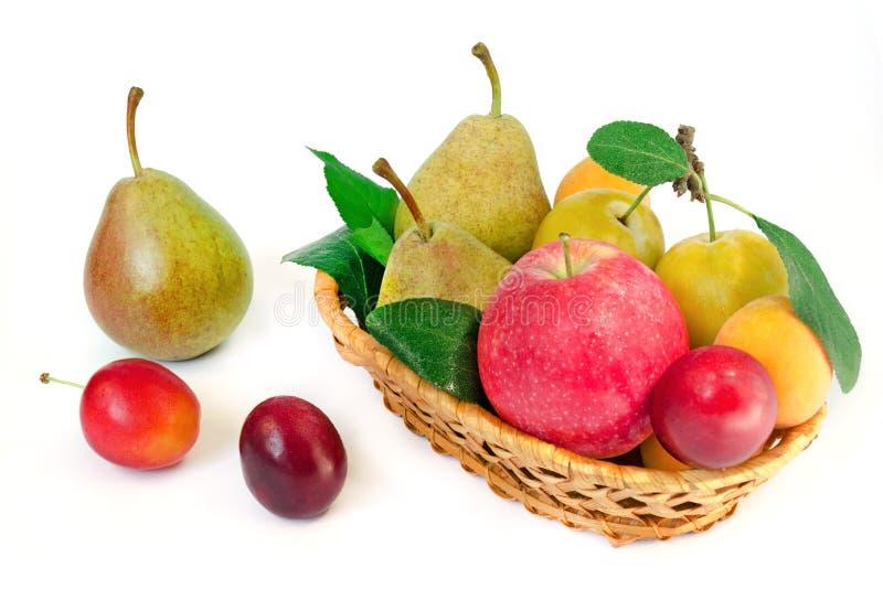 Trävide- korg med hela mogna frukter - päron, plommoner, aprikors och äpplen på en vit bakgrund arkivfoton