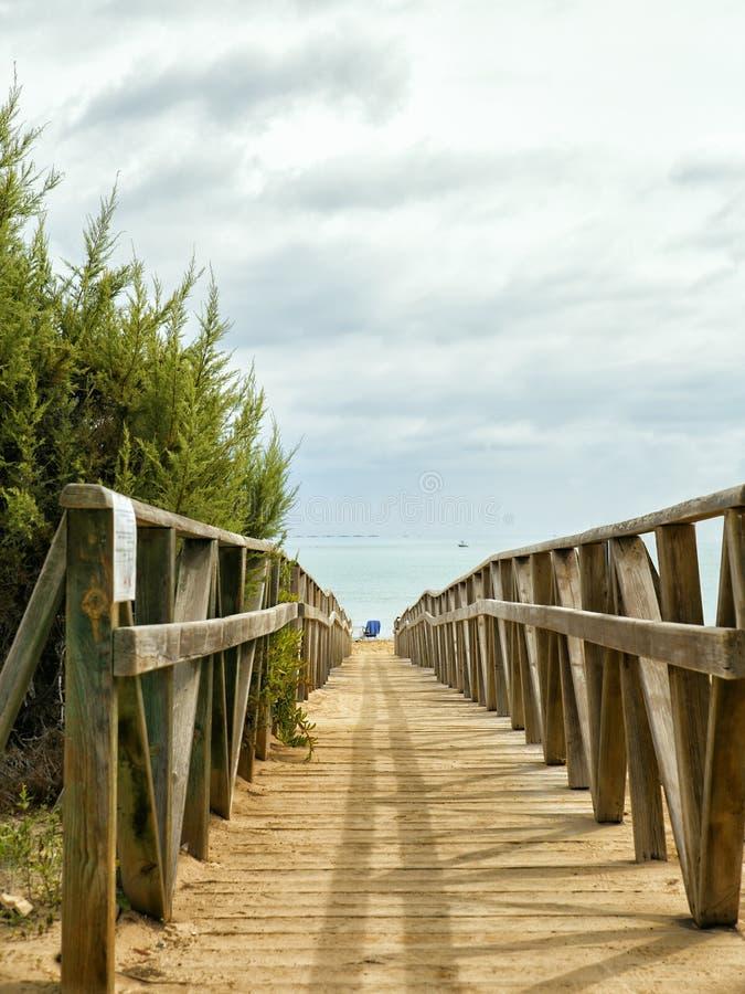 TräWalkway till stranden Alicante Spanien royaltyfri foto