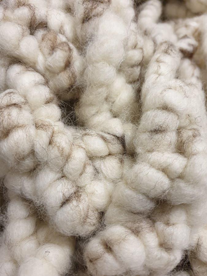 Tråd av ull för tjocka, varma vita får i beigea och bruna naturliga färger, kanske mattull fotografering för bildbyråer