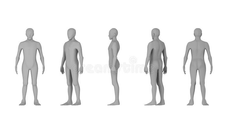 Trådram av människokroppar Polygonal modell på vit bakgrund royaltyfri illustrationer