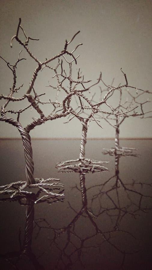 Trådspoleträd arkivfoton