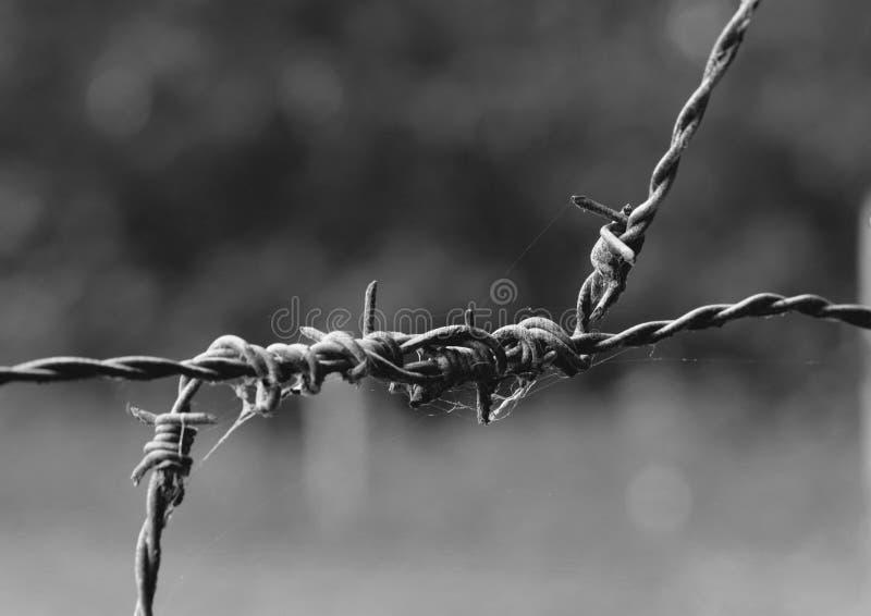 Trådstaket är farliga på en fel väg royaltyfria bilder
