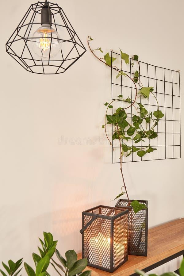 Trådtillbehör med växter arkivfoto