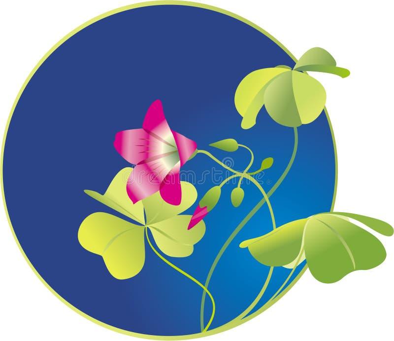 trébol Cuatro-con hojas, flor stock de ilustración
