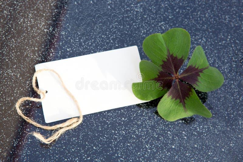 Trébol de cuatro hojas y tarjeta del día de fiesta fotos de archivo