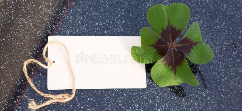 Trébol de cuatro hojas y tarjeta del día de fiesta fotografía de archivo