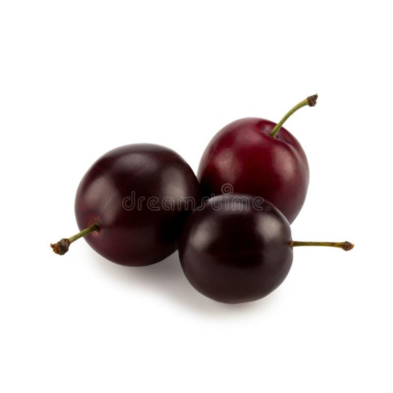 Três ameixas maduras com sombra foto de stock
