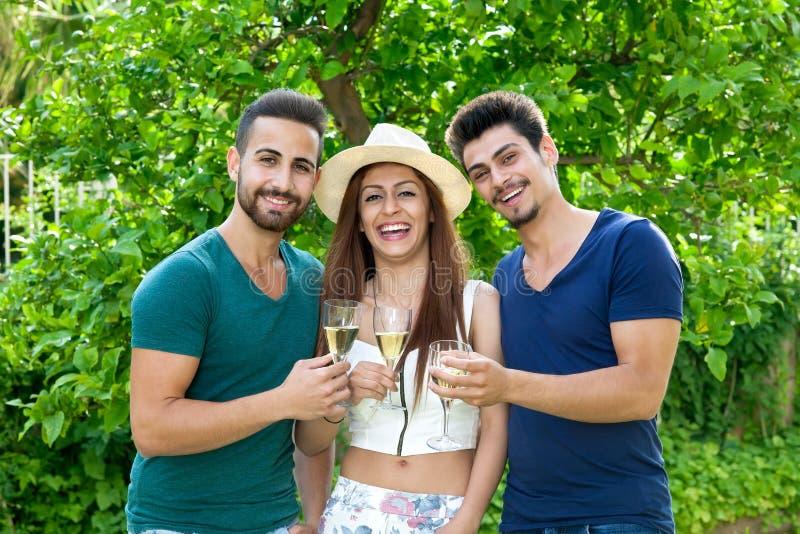Três amigos de riso que comemoram com champanhe fotos de stock royalty free