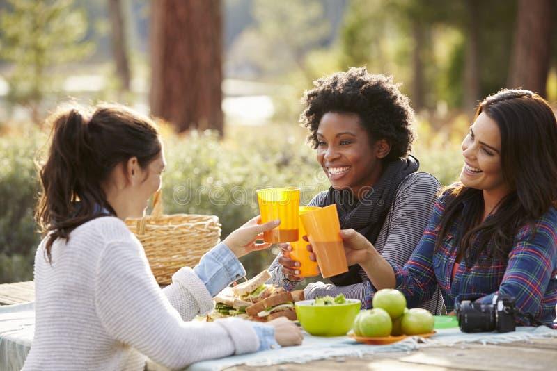 Três amigos fêmeas em uma tabela de piquenique que faz um brinde foto de stock