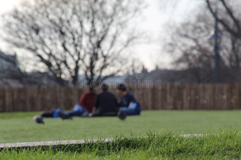Três amigos no parque imagem de stock royalty free